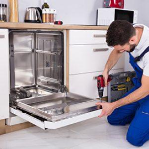 dishwasher 3 web